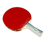 On Sale! Double Fish 2A-C(FL) New 2A-Series Beginner's Table Tennis Racket