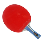 Double Fish 5A-C(FL) New 5A-Series Professional Table Tennis Racket
