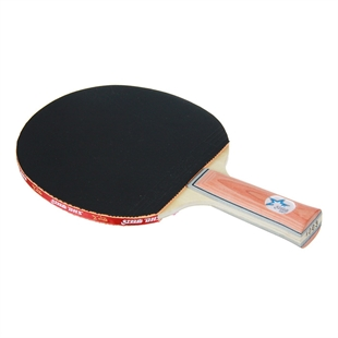 DHS X1003 (FL) New X-Series Recreational Table Tennis Racket