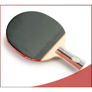 DHS X2007 (Penhold) New X-Series Professional Table Tennis Racket