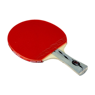 DHS X3002 (FL) New X-Series Professional Table Tennis Racket