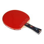 DHS X4002 (FL) New X-Series ALL-STAR Table Tennis Racket
