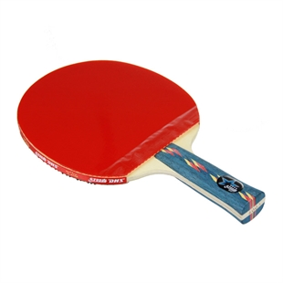 DHS X4003 (FL) New X-Series ALL-STAR Table Tennis Racket