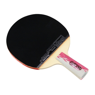 DHS X4007 (Penhold) New X-Series ALL-STAR Table Tennis Racket