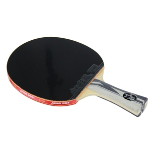 DHS X5002 (FL) New X-Series SUPERSTAR Table Tennis Racket