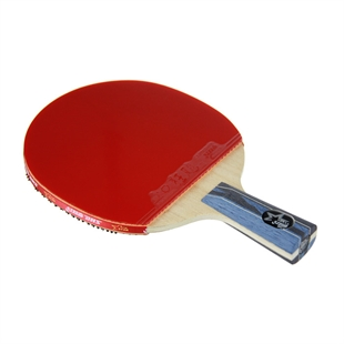 DHS X5007 (Penhold) New X-Series SUPERSTAR Table Tennis Racket