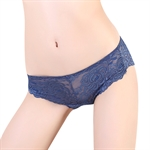 VENI MASEE® Sexy Women Lace Fascinated Low Waist Brief Women Underwear