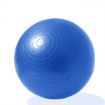 GEPSON - Yoga Anti Burst Professional Stability Ball Kit Free Pump(65cm)